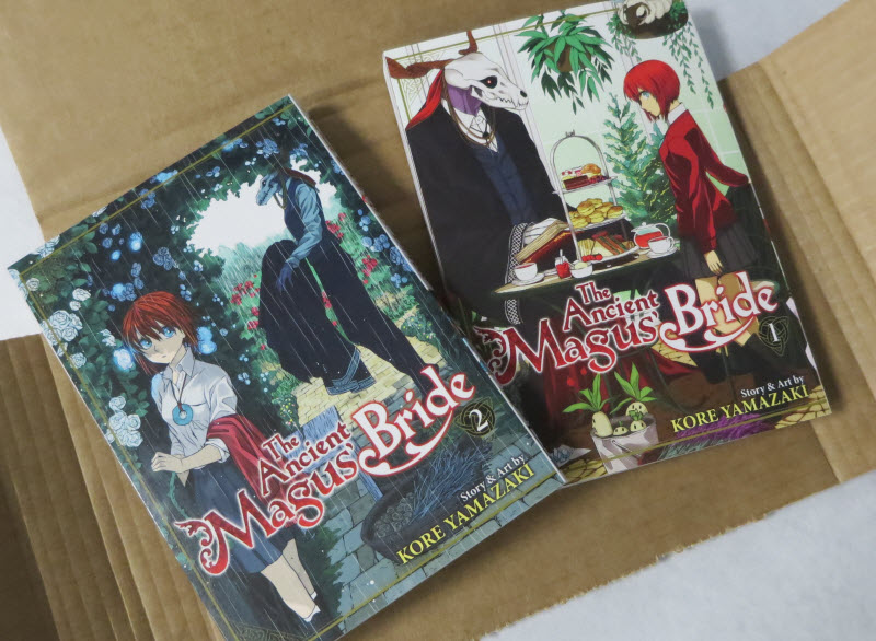 The Ancient Magus's Bride