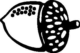 acorns-final08